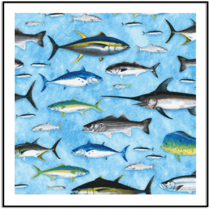 REGATTA by Nick Mayer Nature illustrations, LLC from Eat. Sleep. Fish. ANK1620276