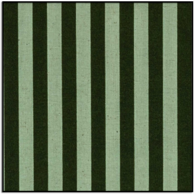 Primavera Cabana Stripe Mint Canvas