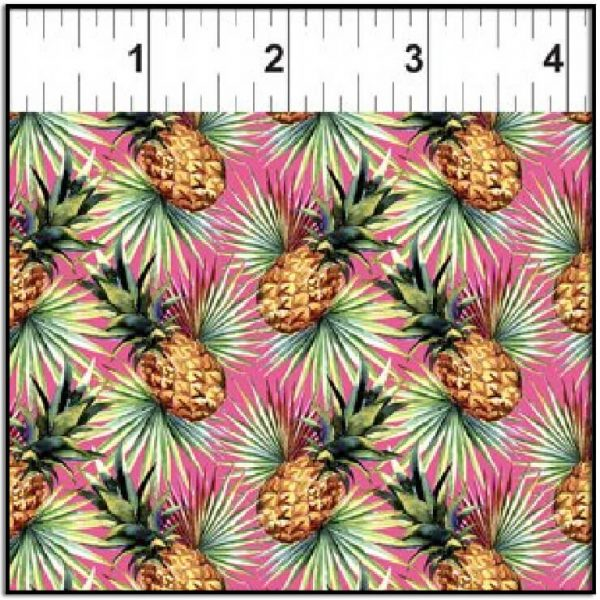 In the Beginning Mini Tropicals Pineapple 2MT1