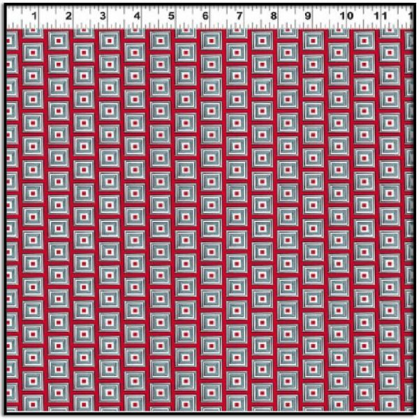 Picholine Red and Blue Squares Y2973-4
